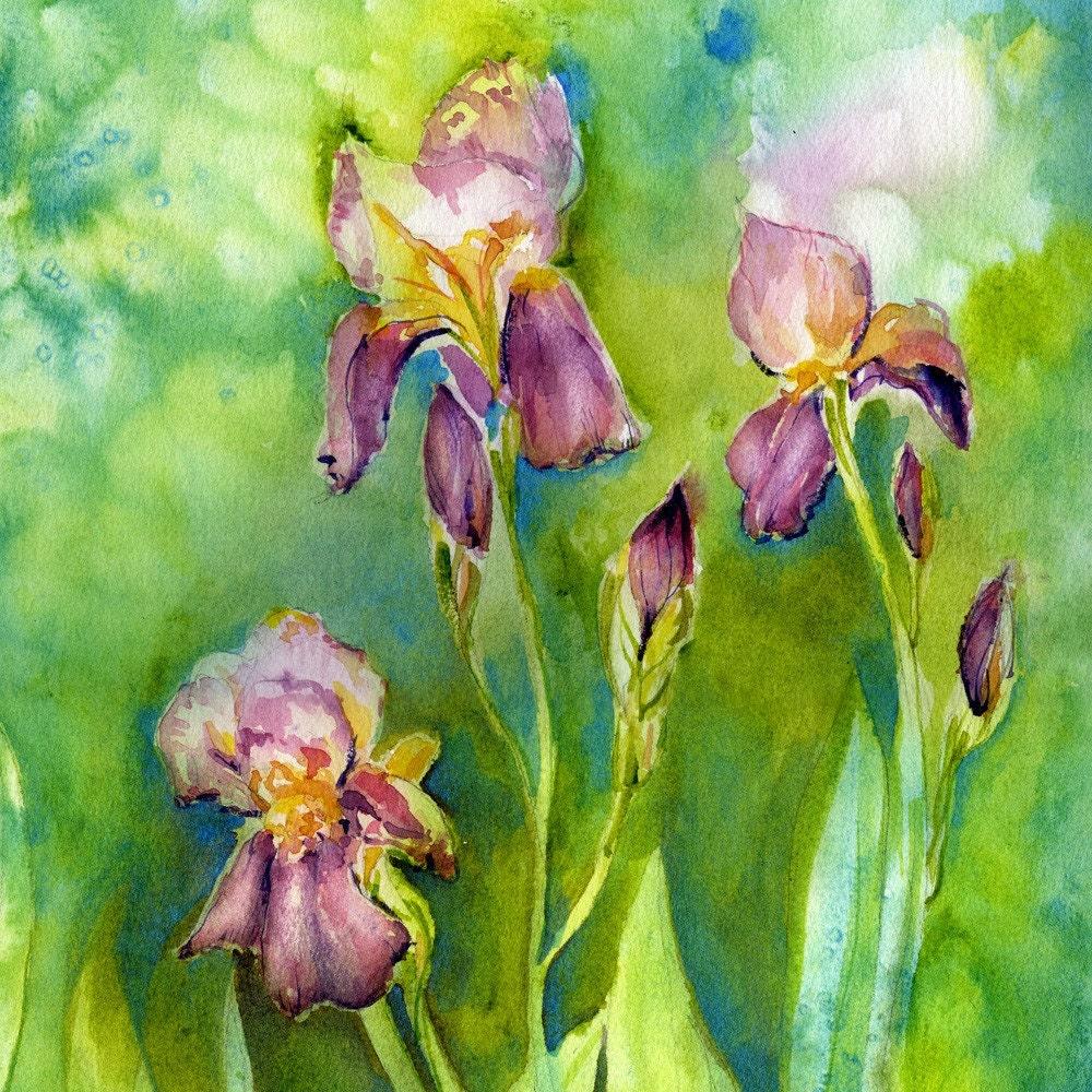 Iris Painting Flower Painting Garden Art Watercolor Etsy