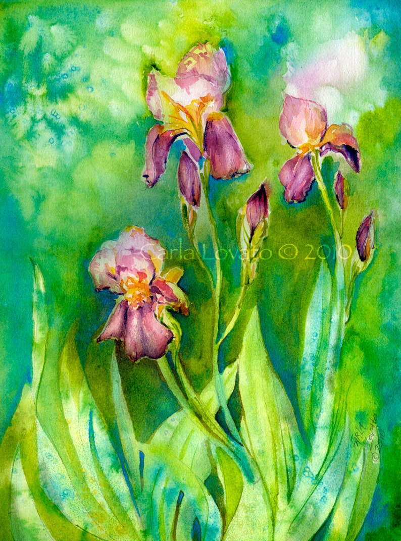 Iris painting watercolor Painting 5 x 7 Giclee print Floral image 0