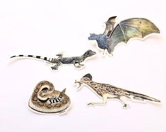 Tucson Desert Critter Sticker, Sonoran Desert, The Loop animals