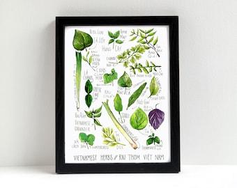 Vietnamese Herbs Watercolor Print