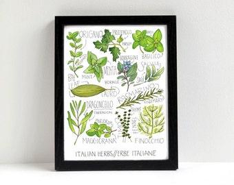 Italian Herbs Print Kitchen Art