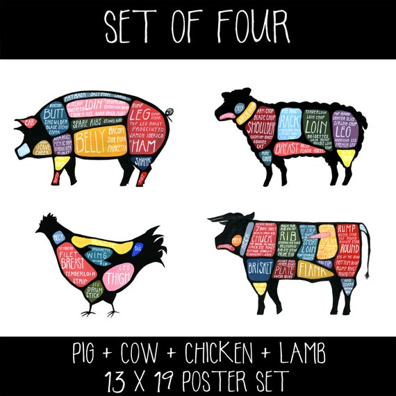 Set of Four Meat Butchery Diagrams Pig Cow Lamb Chicken