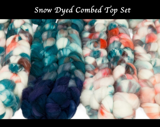 Snow Dye 2021 Set of 4 OOAK Braids Llegacy Hand Dyed SW Merino Combed Top/ 16 oz. total