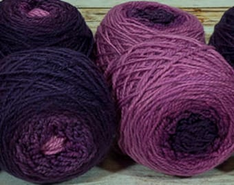 "Shorty Sock Twins "" Evil Stepmother "" - Lleap Handpainted Semisolid Gradient Sock Yarn Set"