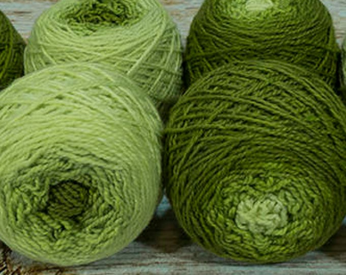 "Shorty Sock Twins "" Serpent Green "" - Lleap SW Merino/Nylon Handpainted Semisolid Gradient Sock Yarn Set"