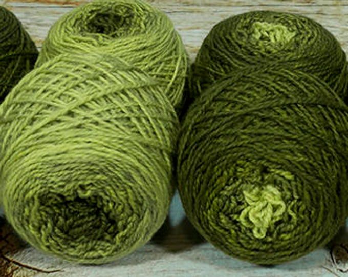 "Shorty Sock Twins "" Kelp "" - Lleap SW Merino/Nylon Handpainted Semisolid Gradient Sock Yarn Set"
