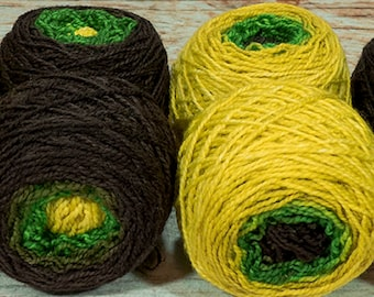 "Shorty Sock Twins "" Link "" - Lleap Handpainted Semisolid Gradient Sock Yarn Set"