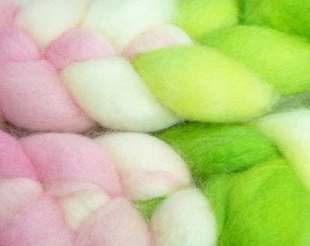Frog Princess / Handpainted Llyric SW BFL Combed Top/ 4 oz.