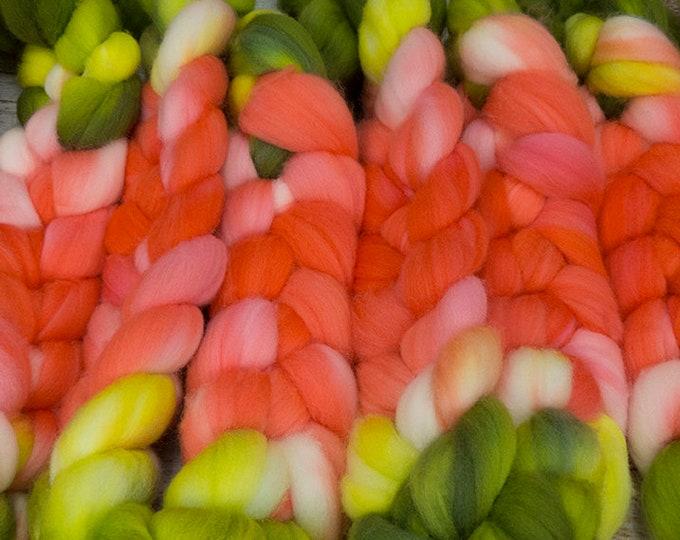 Bromeliad Beauty - Llore Handpainted SW Targhee Combed Top/ 4 oz.