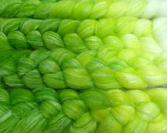 Sprout / Handpainted SW Merino-Bamboo-Nylon Combed Top/ 4 oz.