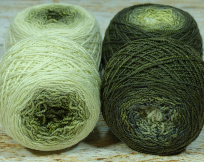 "Sock Twins "" Lichen "" -Lleap Handpainted Gradient Sock Yarn Set"
