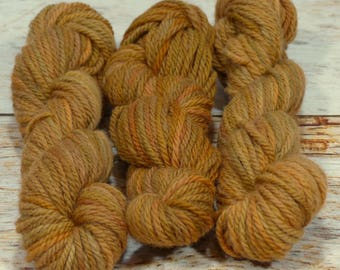 """Wee Llineage Worsted """" Meemaw's Carrot Cake """" Semisolid Hand Dyed Yarn 20 g / 50 yd"""