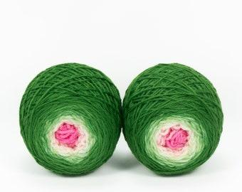 "Sock Twins "" Frog Princess "" -Llively Handpainted Gradient Sock Yarn Set SW Targhee"
