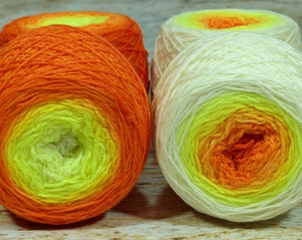 "Full "" Phoenix Hatchling "" - Lleaf Handpainted Gradient Fingering Weight Yarn"