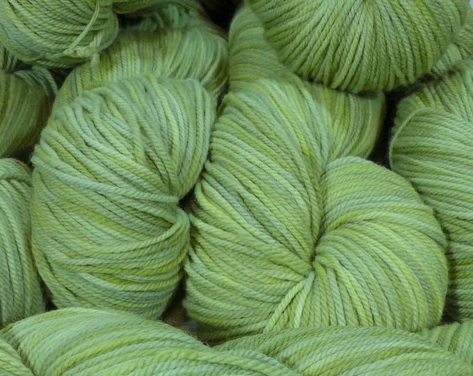 """Llineage Worsted """" Lichen """" Semisolid Hand Dyed Yarn 160g / 400 yd"""