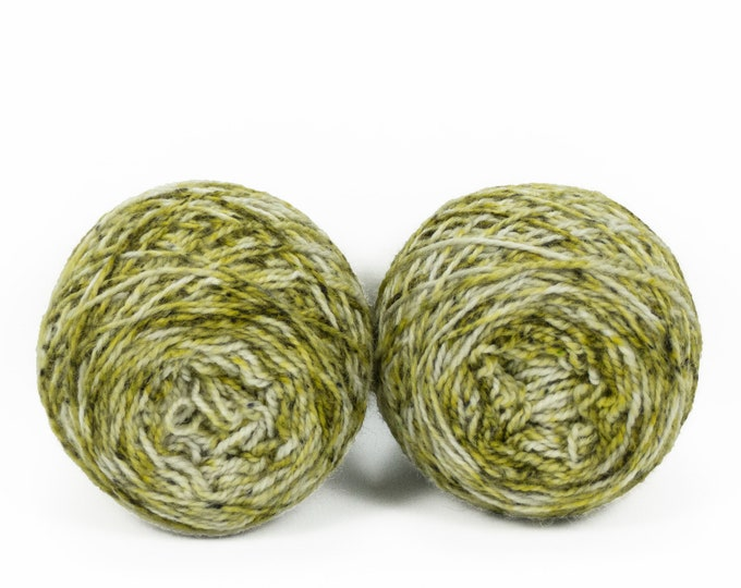 """Fraternal Shorty Sock Twins """" Kelp """" - Llark SW BFL/Nylon Speckle Gradient Sock Yarn Set"""
