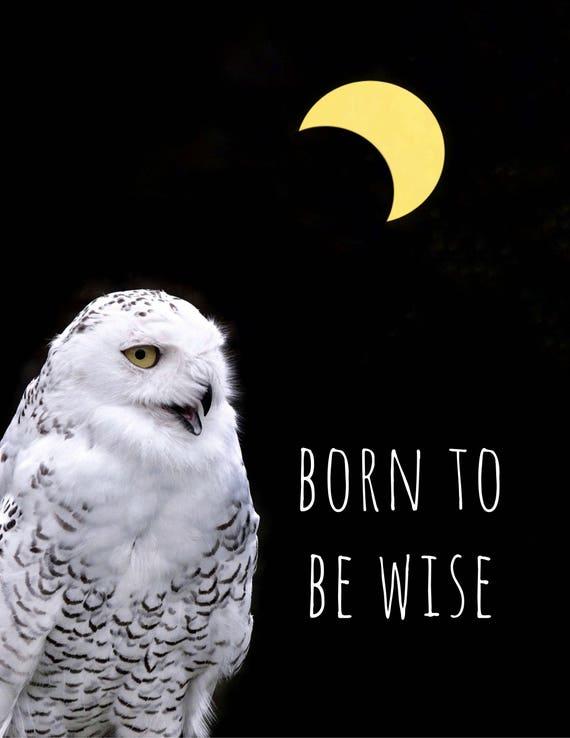 Urodził Się Być Mądry Print Księżyc Sowa Cytat Wystrój Domu Sztuki Motywacyjne Domu ściany Inspirujące Typografii Sypialnia Półksiężyca Eclipse