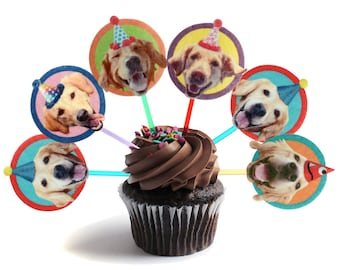 Golden Retriever Dogs Cupcake Toppers - set of 6 - photo reproductions on felt - funny golden retriever portraits birthday decor