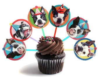 Boston Terrier Dog Cupcake Toppers