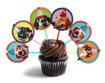 Dachshund Dogs Cupcake Toppers - set of 6 -  photo reproductions on felt - funny wiener dog portraits birthday party decor