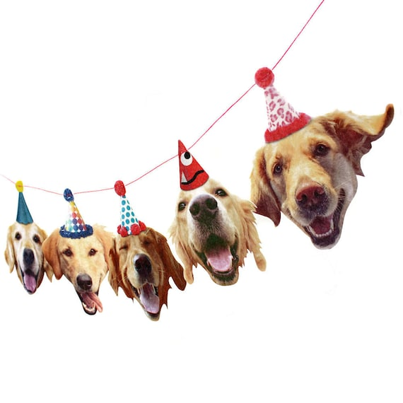 Golden Retriever party garland featuring 5 dog heads wearing party hats.