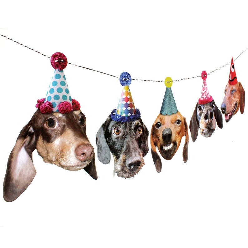 Dachshund Dogs Birthday Garland photo reproductions on heavy image 0