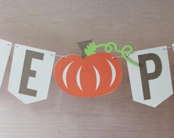 """Little Pumpkin Banner - Pumpkin Baby Shower Sign - Custom Colors - 4"""" Pennants - Fall Photo Prop"""