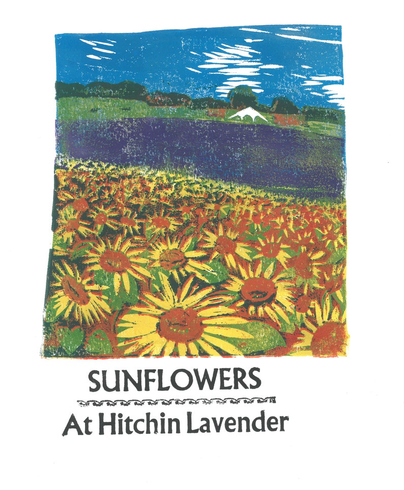 Sunflowers at Hitchin Lavender Lino and Letterpress Print image 0