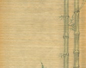 Shaved Wood Bamboo Paper - Japanese