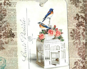 Gift Tags, Bluebirds, Bird Tags, Tags, Bird Lover, Party Favors