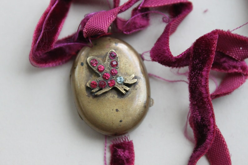 Rare Victorian Jeweled Butterfly Locket with Glass Door Inside  Antique Garnet Paste Reliquary Locket