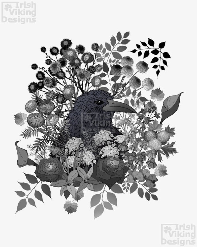 Raven in the Garden of Departed Botanicals black rose image 0