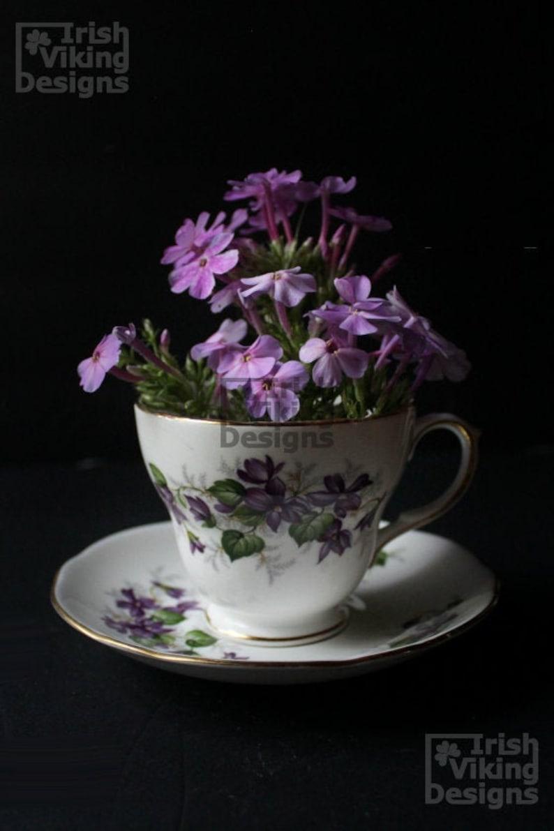 Chiaroscuro Study fine art photography print set floral image 0