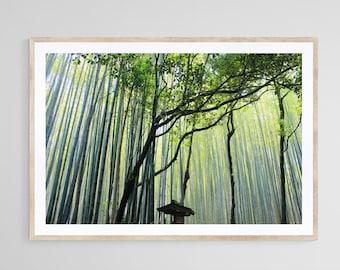 Japanese Bamboo Forest Print, Kyoto, Japan Photography, Green Bamboo Wall Art, Art Print, Interior Decor, Printable Poster, Digital Download