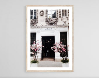 French Architecture & Pink Cherry Blossoms, French Building, France Pink White Theme, Art Print, Decor, Printable Poster, Digital Download