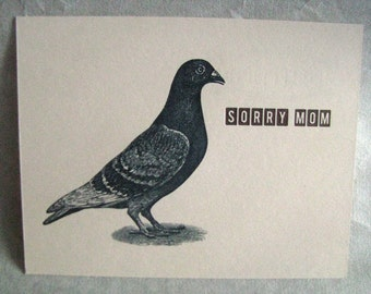 Single Letterpress Postcard Sorry Mom Pigeon