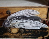 white wings steampunk hair clip with pheasant feathers and silver metal motif