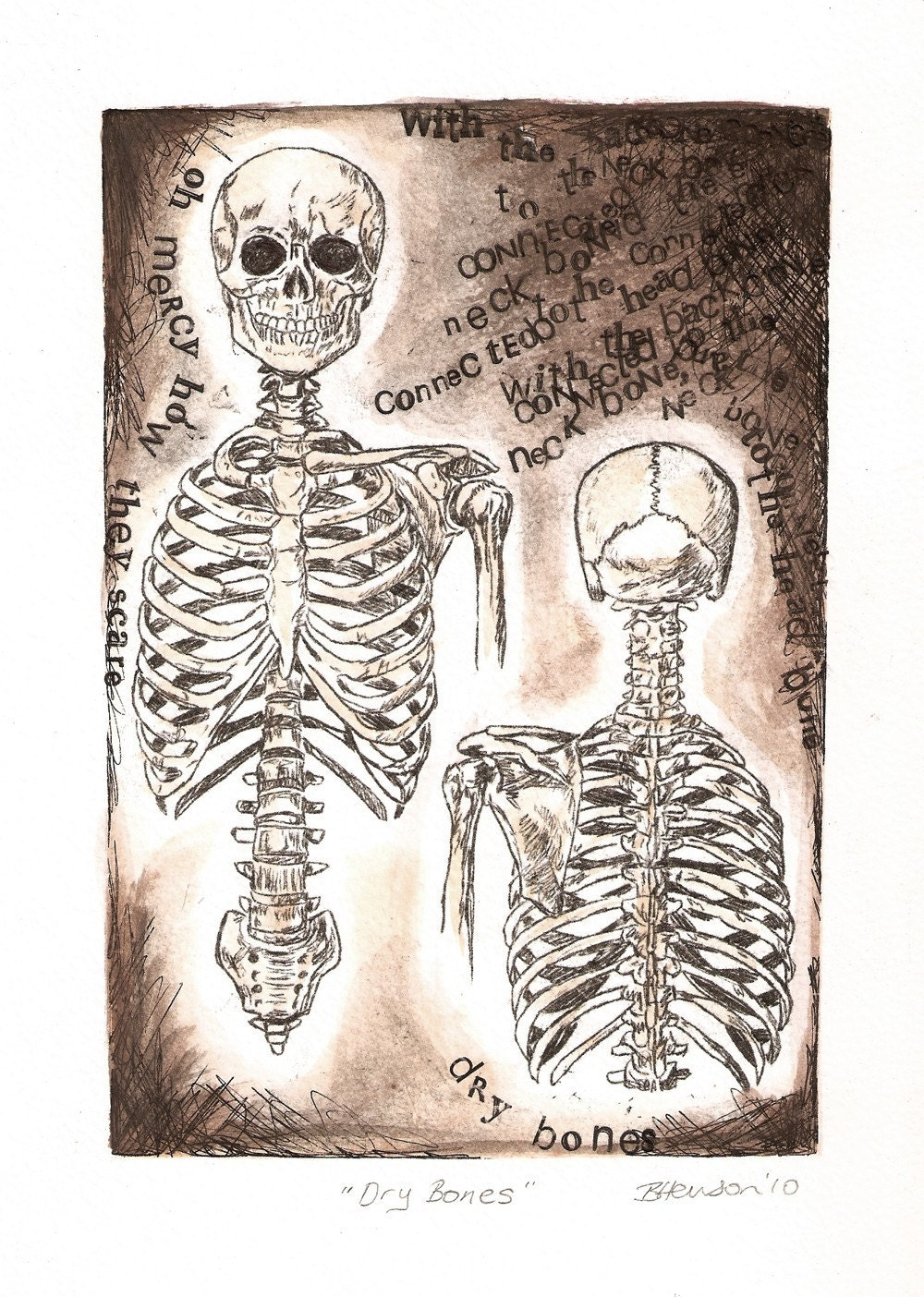 Anatomy Art Dry Bones Skeleton drawing The neck bone is | Etsy