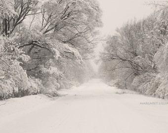 winter photography, sepia, landscape, nature photography, wall art, home design, pathways, seasonal, Christmas