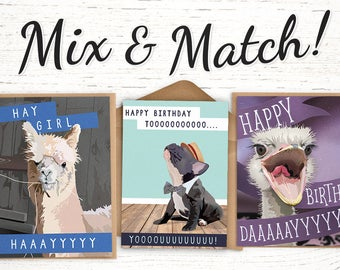 Stock Up 10 Cards For 25 Save With Our Bulk Birthday Card Pack Choose From Funny Including France Bulldog