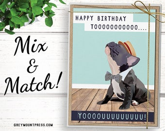 Stock Up 8 Cards For 20 Bulk Birthday Card Pack Includes Funny Like Our Popular France Bulldog