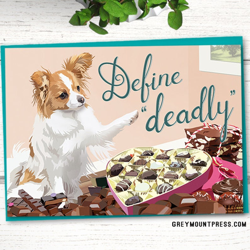 Papillon Card Funny Birthday Cards For Dog Lovers Sarcastic