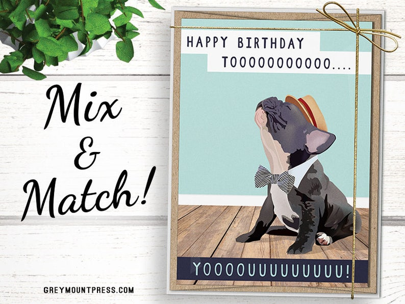 Stock Up 8 Cards For 20 Bulk Birthday Card Pack Includes