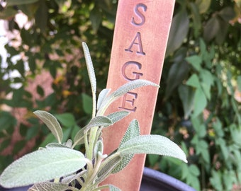 Individual Herb Garden Markers. Ecofriendly, Durable, Reusable Plant Markers. Kitchen Window Pots. Ready to Ship