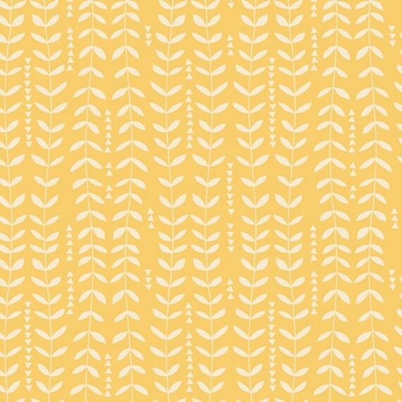 Kelp Sunshine