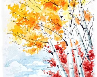 "Aspen Trees Watercolor - Art Print 11x14"""