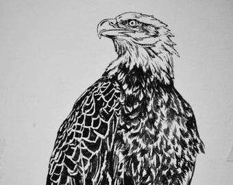 "Bald Eagle, hand carved woodblock print, 25""x37"""