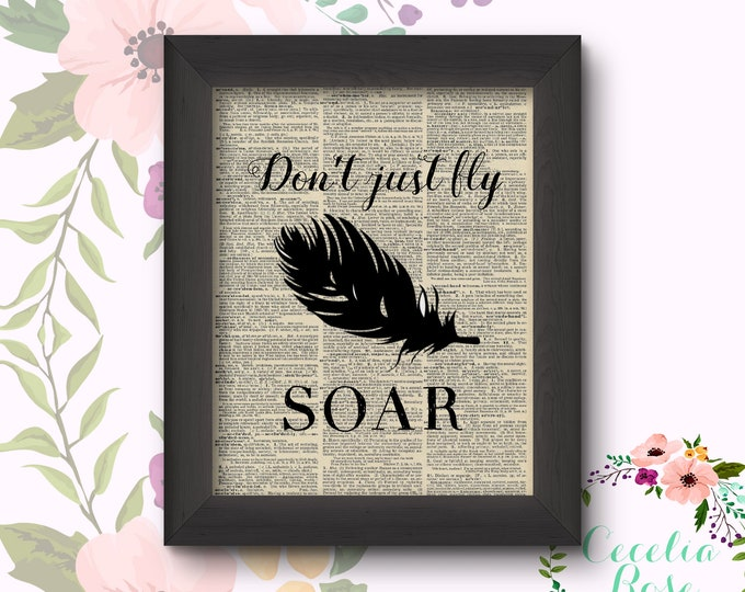 Don't Just Fly Soar =