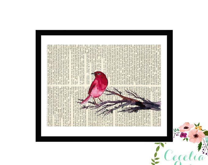 Red Bird Cardinal Finch Book Art Vintage Book Art Cute Simple Box Frame or PrintFarmhouse Style Farmhouse Style