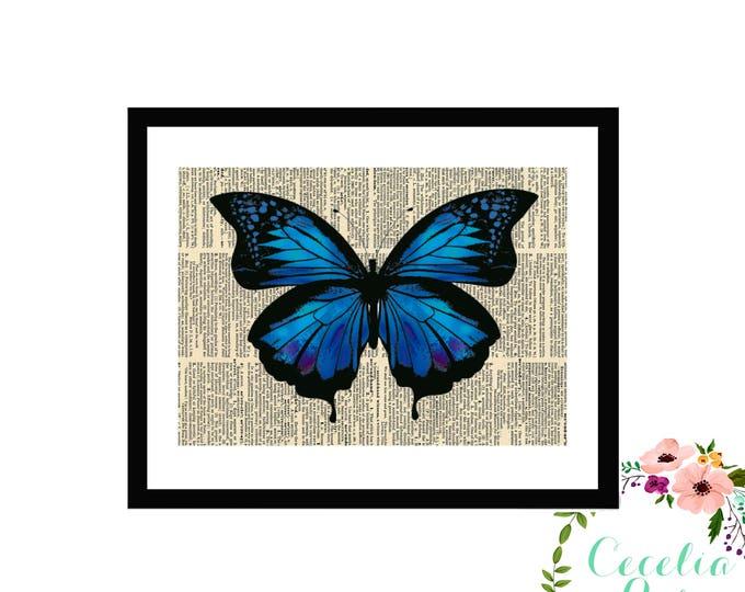 Blue Indigo Butterfly